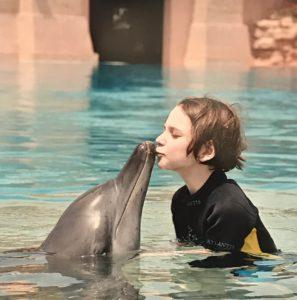 Дельфины 2