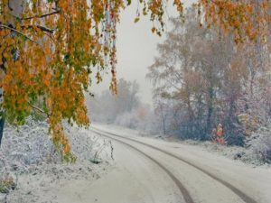 Осень 80