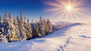Зима41