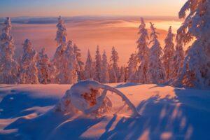 zima-sneg-svet-respublika-sakha-minus-57-kholodno-moroz-sibi