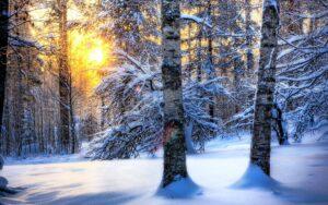 Зима53