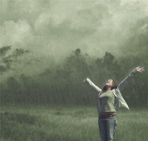 Дождь 3.1