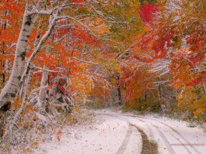 Осень 85